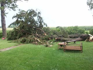 Trees were knocked down by the wind north of La Porte City