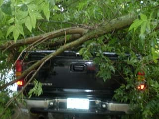 A truck is caught under a tree in Gilbertville