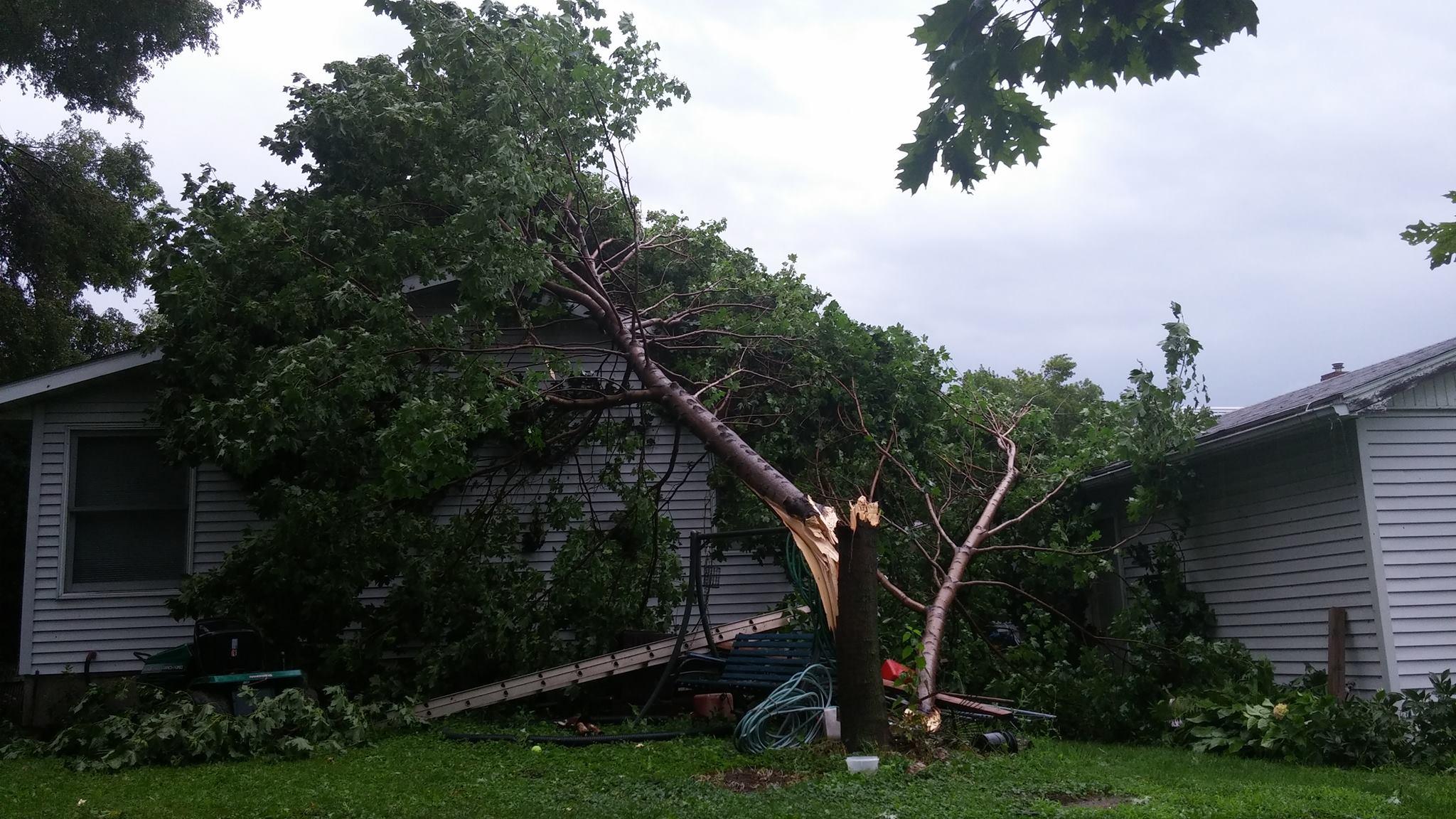 Storm damage in Dewitt