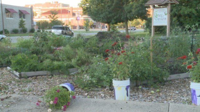High Speed Chase Ends In Community Garden Kwwl Eastern