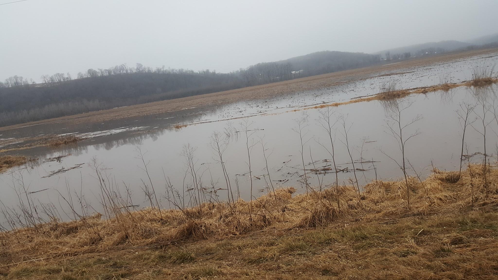 Water in fields near Millville from ice jam on Turkey River