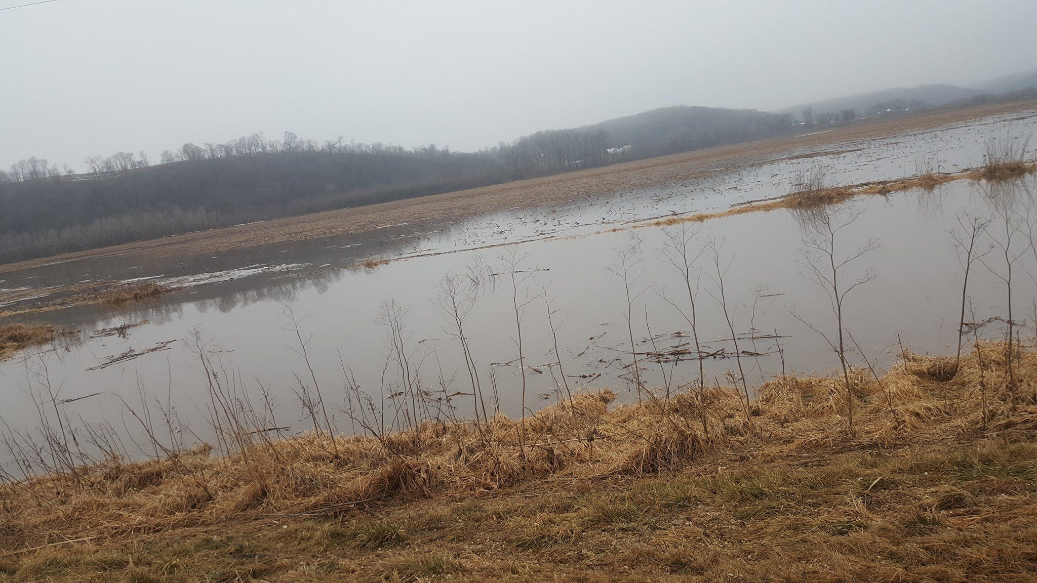 Water in fields near Millville from ice jam on Turkey River