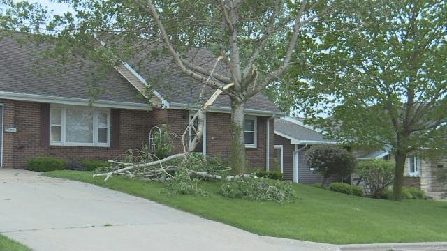 A tree branch is snapped off during Wednesday night's storms in Holy Cross.