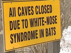 The sign posted outside Maquoketa Caves State Park. The rest of the park is open.