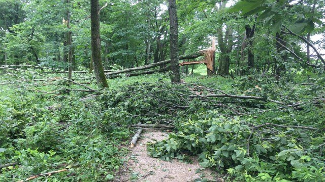 Many trails at Effigy Mounds National Monument remain closed after sustaining heavy storm damage. (Courtesy: Effigy Mounds National Monument)