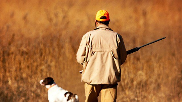 Wisconsin dnr sold 10 hunting licenses to infants ktiv for Wisconsin dnr fishing regulations