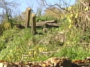 A broken suspension bridge sits next to Catfish Creek