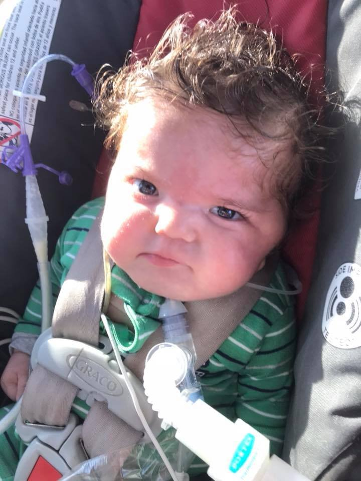 "Deacon on December 20, 2017 - This afternoon, his mom posted on Facebook: ""Deacon is headed home!!! Not one minute too soon. He hasn't felt the sun on him in way too long."""