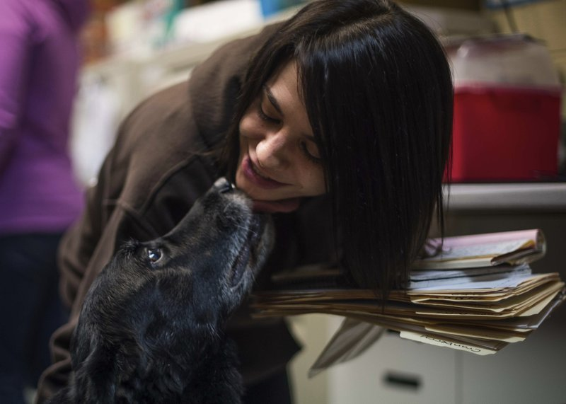 Jody Berisko, an employee at Animal Protectors of Allegheny Valley gets a kiss from Abby on Jan. 30, 2018. (Nate Smallwood/Pittsburgh Tribune-Review via AP)