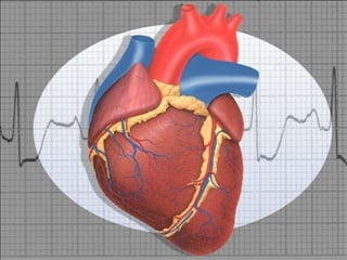 Health Plus: Free teen heart screenings