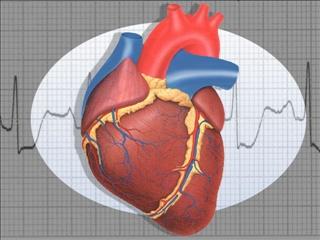 Health Plus: Free teen heart screenings