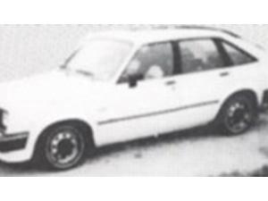 Tammy Zywicki's car