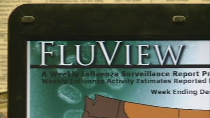 The US Centers for Disease Control and Prevention has extensive online flu resources