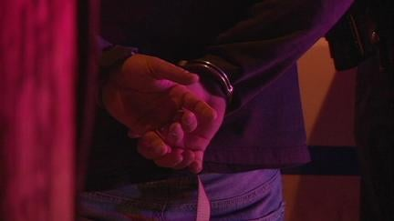 A bar brawl early Sunday morning in Dubuque leads to the arrest of several people