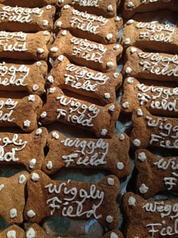 Dog biscuits at Wiggly Field's grand opening in downtown Waterloo. (Amie Steffeneicher, KWWL)