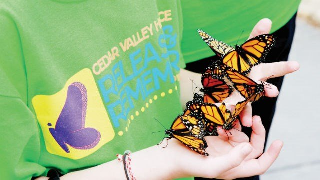 Cedar Valley Hospice holds butterfly release Aug. 30th