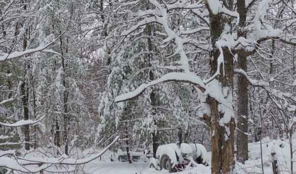 Photo from user @Randyh14 in Decorah, who reported 11.5 inches of snowfall Sunday night.