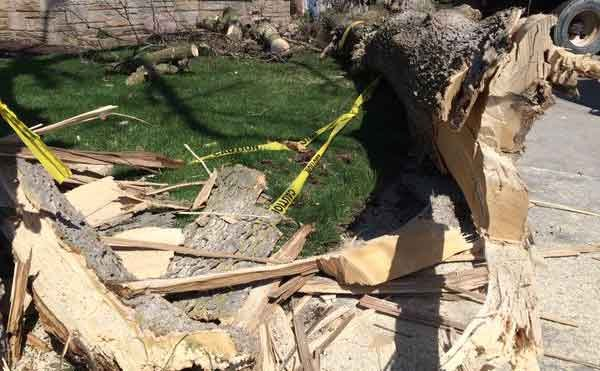 Tornado damage in Clinton. An EF-1 tornado started there Thursday, April 9. (Brad Hanson, KWWL)
