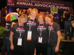 Beyond Pink Team in Washington D.C.